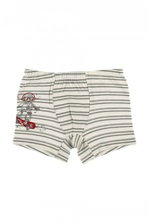 Boy's Striped Printed Boxer- 2 Pieces